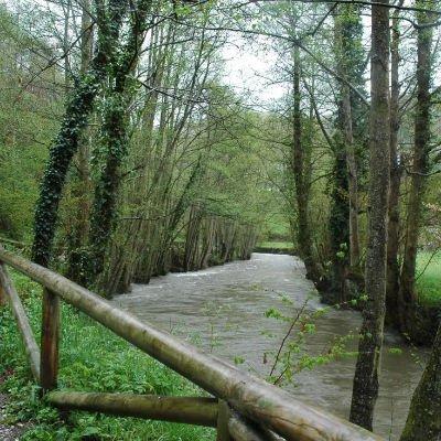 Paseo del vino Cangas del Narcea