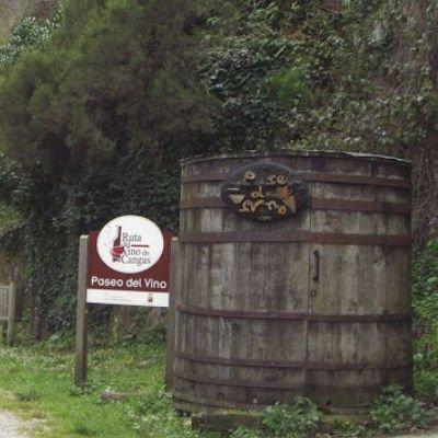 ruta del vino cangas del narcea